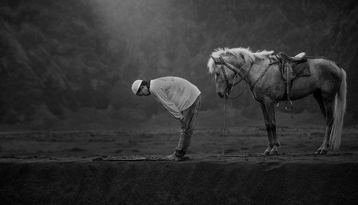 Petani dengan seekor kuda